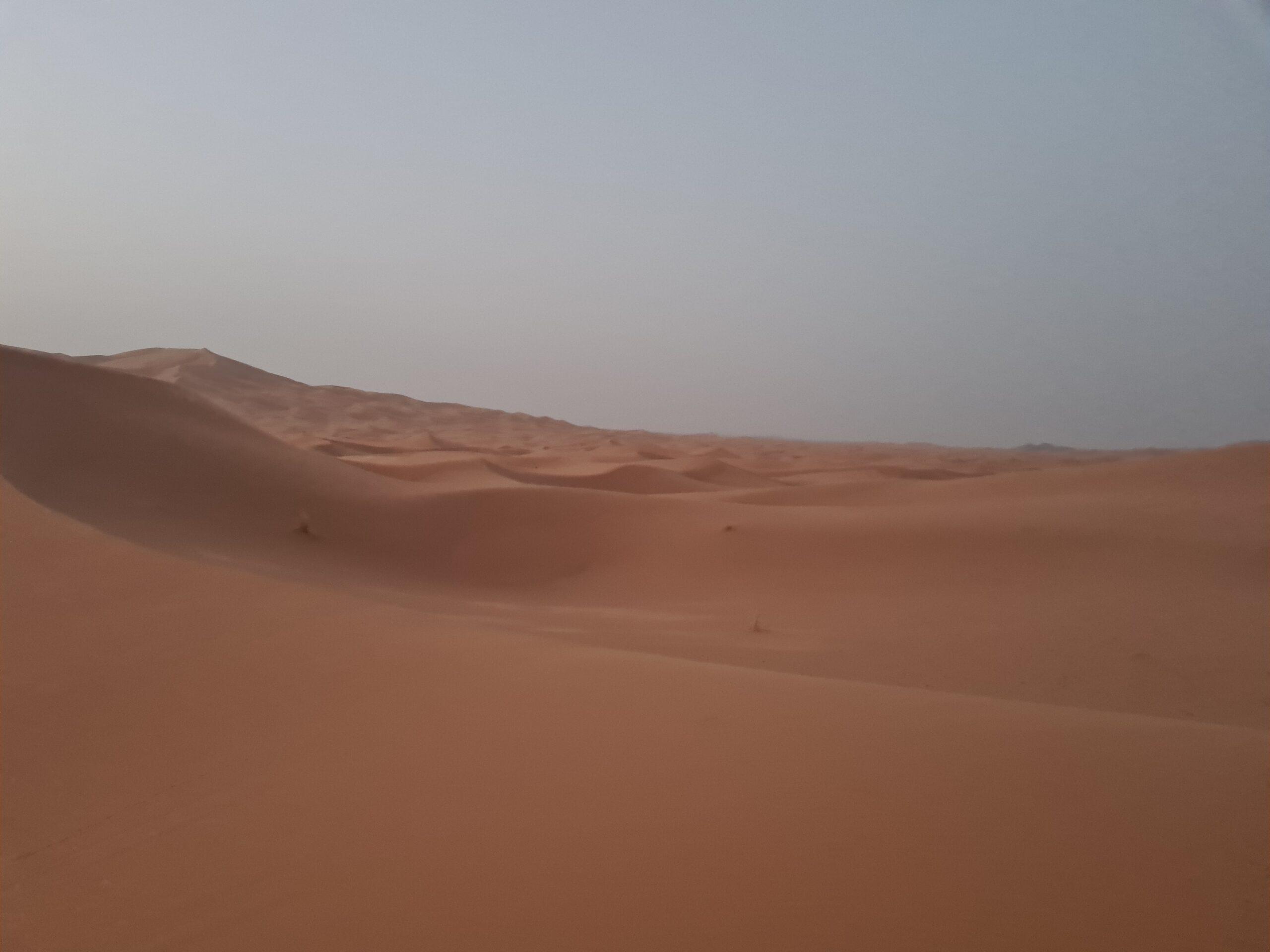 Sahra Çölünde gündoğumu
